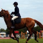 woodbridge_horse_show_470_402x300-150x150